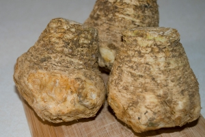 Celery Root, but NOT Apio Venezolano